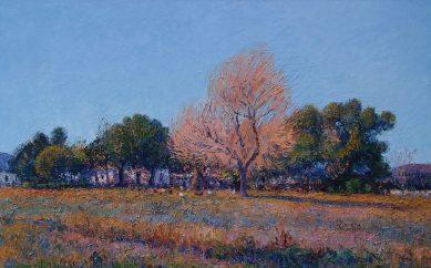 Mario Sanzano: hermanado con su paisaje